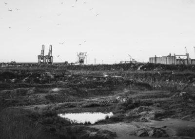 Seagull-Land-Ravenna-Antonello-Zoffoli_DSCF8536